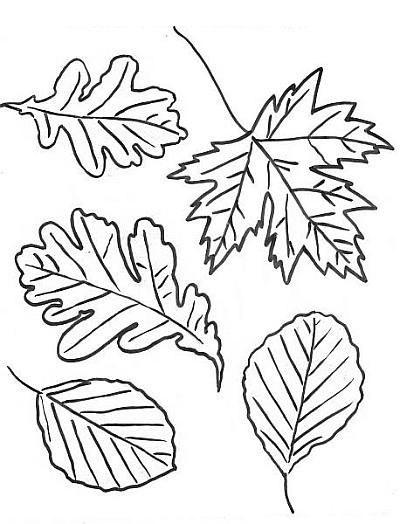 Ежик в осенних листьях. Шаблоны (1) (400x524, 81Kb)