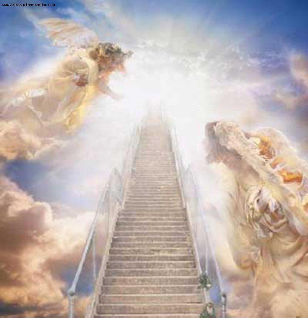 Лебеди открытки, анимация картинки лестница в небо