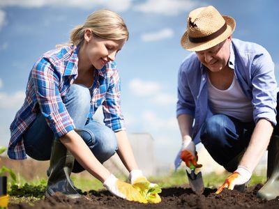 10 наиболее частых ошибок при посадке растений
