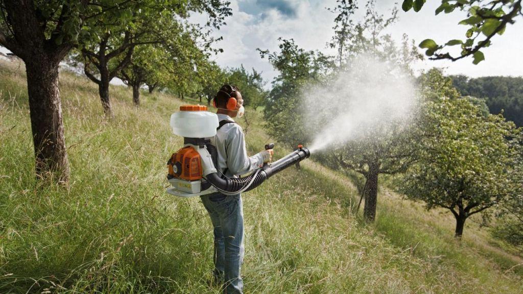 Опрыскивание садовых деревьев весной: препараты, нормы расхода и правила