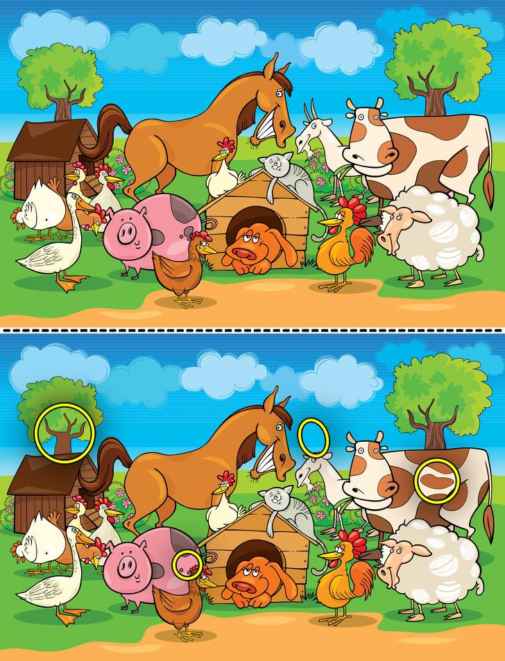 Игра собери картинки и найди отличия на двух картинках, открытки юбилеем