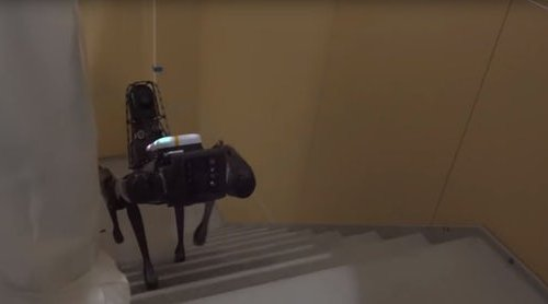 Робот Spot #2