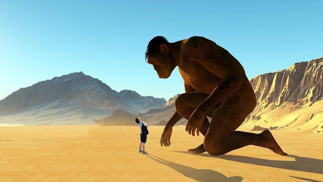 Учёные: Люди появились из-за ошибки природы