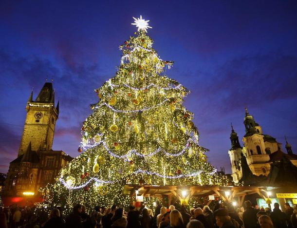 25 красивейших новогодних ёлок со всего мира