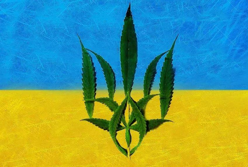 Украина марихуана и печень конопля