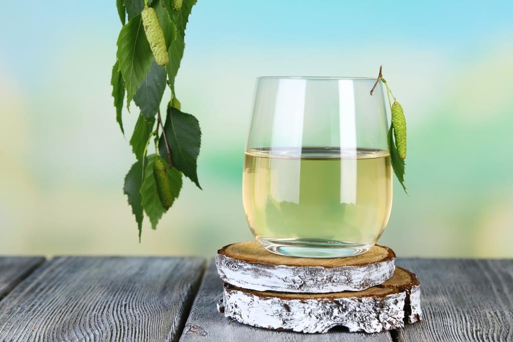 Березовый сок целебные свойства