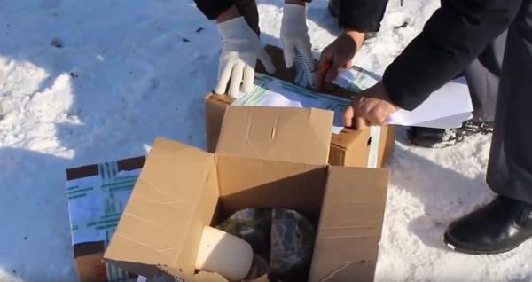 Саратовский чиновник зачитал приговор сыру и сжёг его
