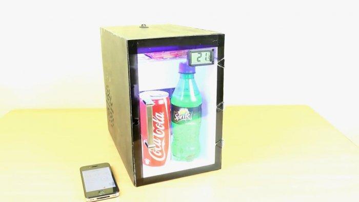 Как сделать мини холодильник фото 468
