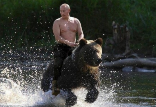 Путин прокомментировал фото верхом на медведе