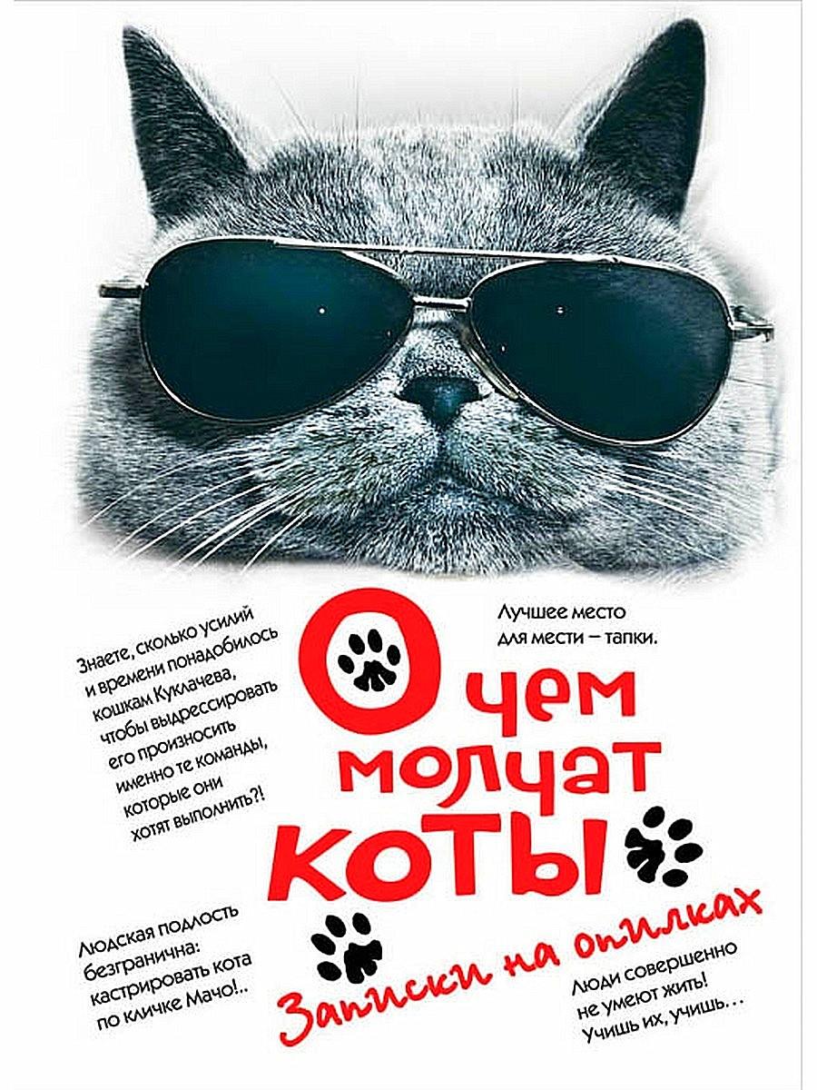 О чём молчат коты