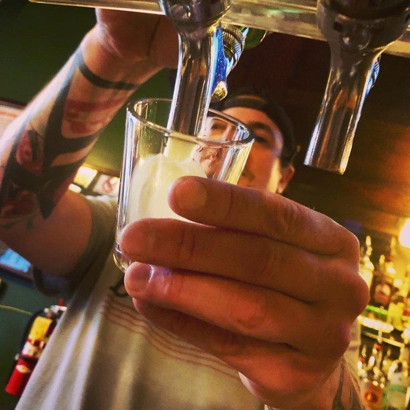 Пьют крафтовое пиво аляска, жизнь, лось, медведь, путешествие, сова