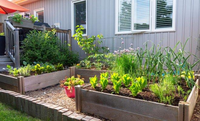 """""""Умные"""" грядки от Мэла Бартоломью – идеальное решение для маленького участка дача,сад и огород,умные грядки"""
