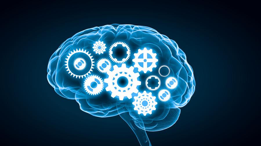Пошаговая перезагрузка мозга