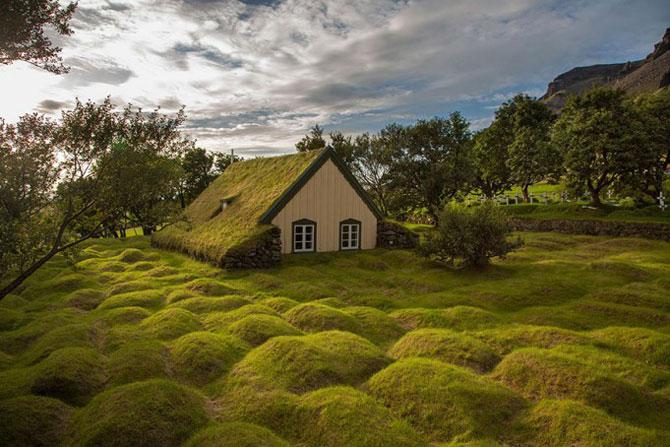 Скандинавские дома с зелёными крышами, которые выглядят, словно из сказки