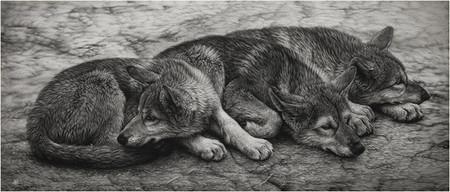 Картины в технике скрэтчборд от Кристины Пенеску