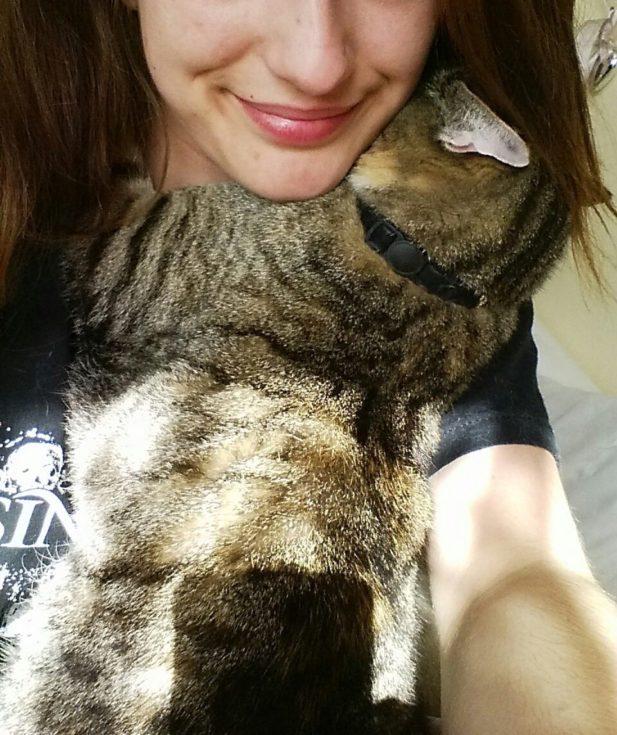 Кошка, которая любит обнимать свою хозяйку
