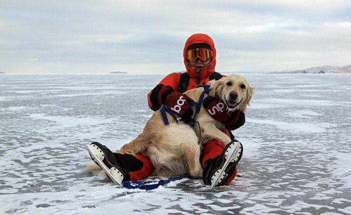 Турист с собакой породы ретривер на льду замерзшего озера Байкал