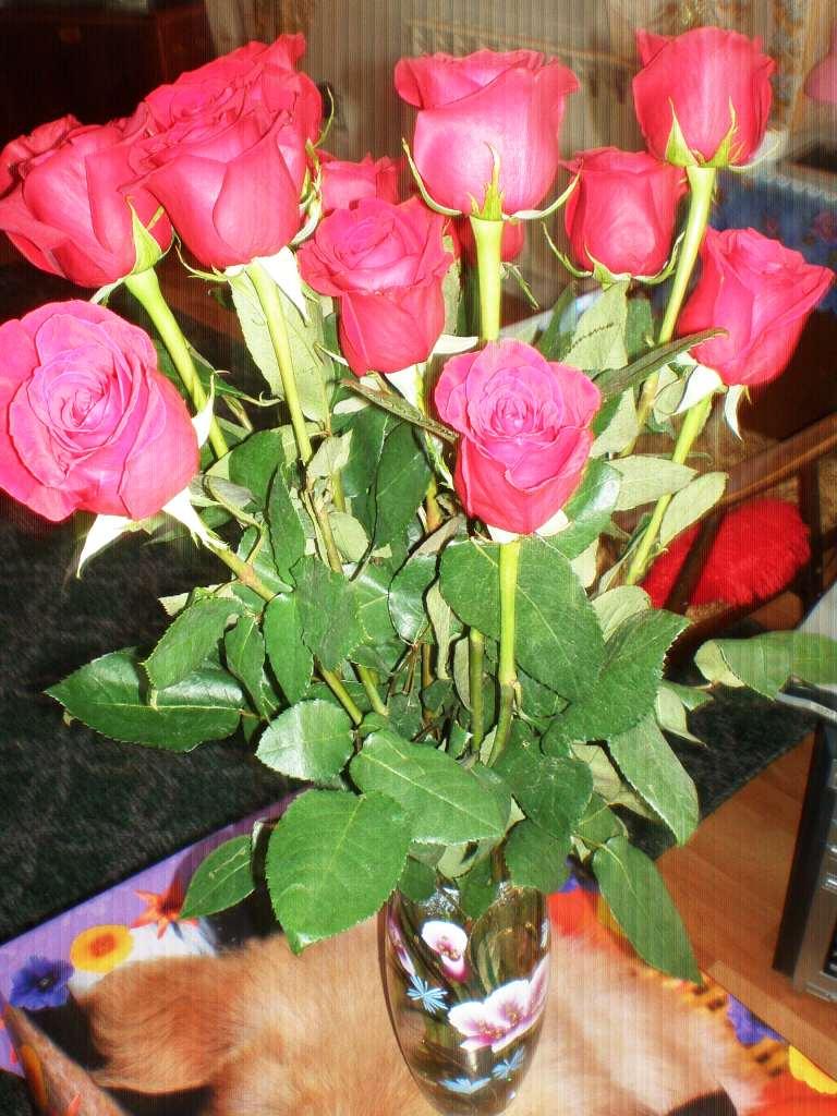 Сколько жизней у букета роз?…