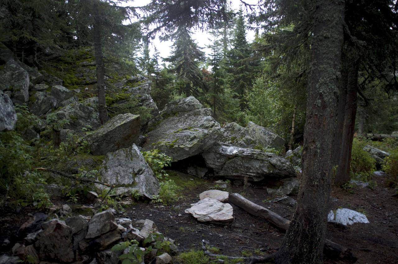 Лес в уральских горах. красота, природа, россия