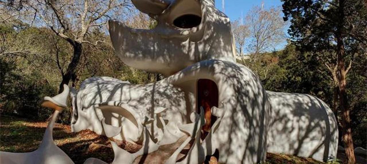 Дом с фантасмагорическими формами в Техасе