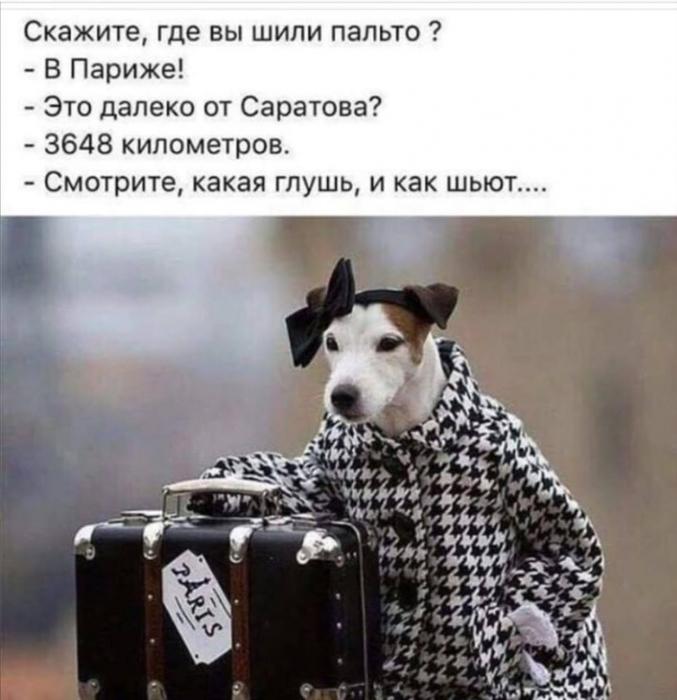 4809770_uJenshina82 (677x700, 227Kb)