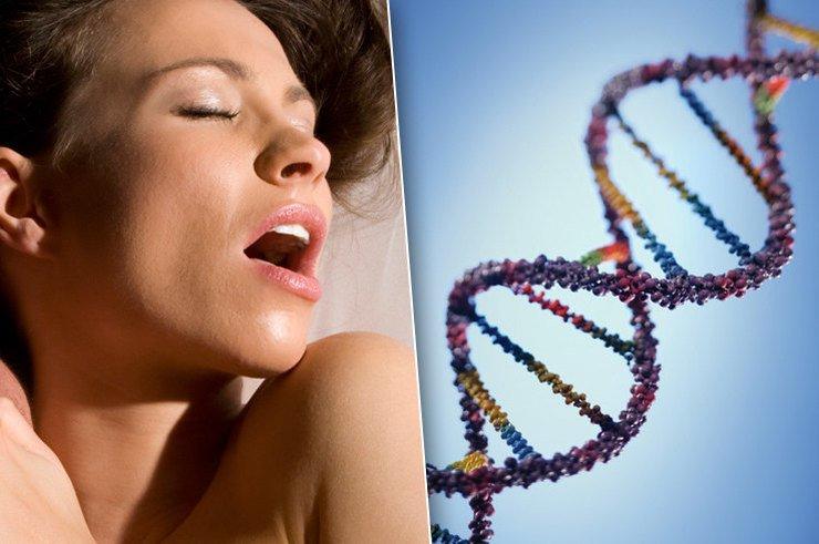 Правда и мифы о генетике