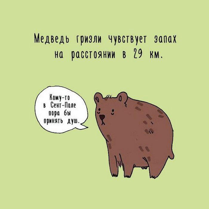Картинки животных интересные факты