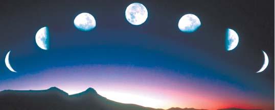 114. Лунные циклы и клев рыбы