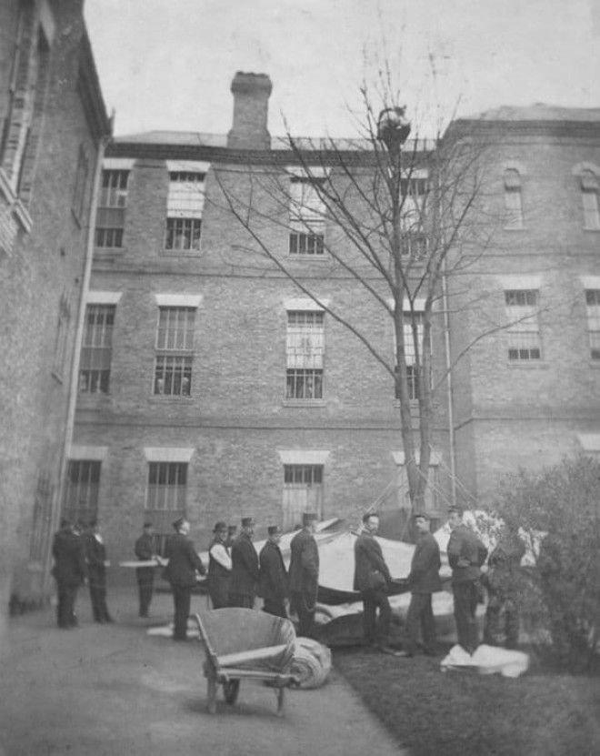Работники психбольницы ждут, когда пациент спустится с дерева. Лондон, 1895 год история, факты, фото