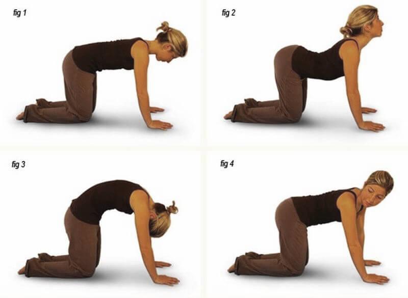 8 упражнений от радикулита