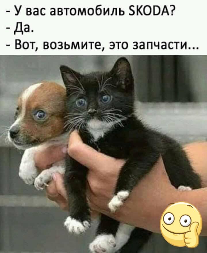 https://mtdata.ru/u19/photo4FDE/20867910333-0/original.jpeg#20867910333