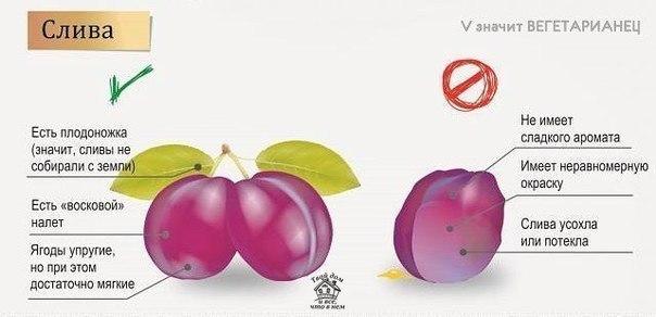 Советы по выбору ягод и фруктов