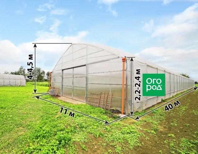оптимальные размеры теплицы для выращивания огурцов и томатов