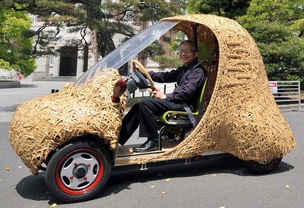 Bamgoo: экологичные автомобили из бамбука
