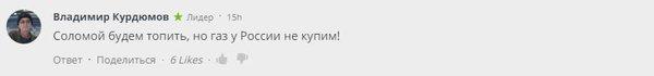 """""""Соломой топить будем, но газ у России не купим!"""" — посмеялся юзер Владимир Курдюмов."""