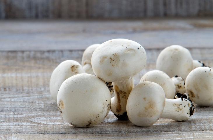 Грибы не жарим, а запекаем. Получается сочнее и ароматнее, чем на сковороде блюда с грибами,закуски