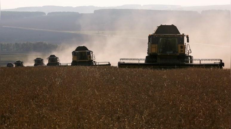 Anadolu: Турция впервые купит у России пшеницу за рубли