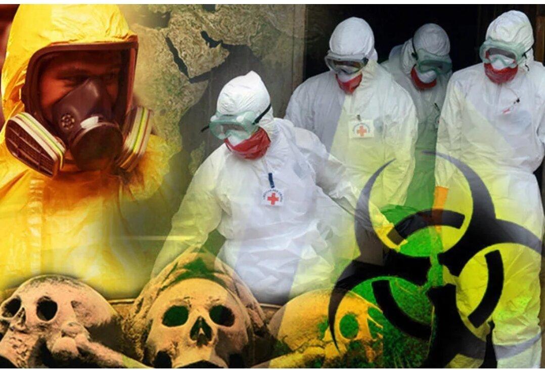 SARS-Cov-2: биологическая война