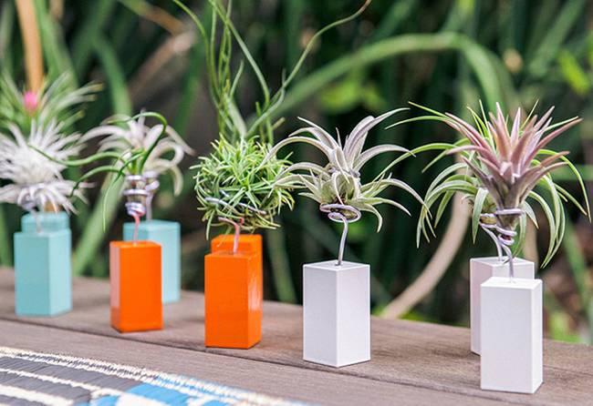 Живая стена из растений с металлической проволокой