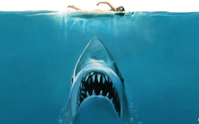 История акулы, державшая в с…