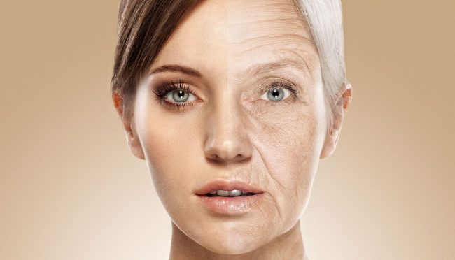 И не мечтайте: учёные пришли к выводу, что процесс старения невозможно остановить