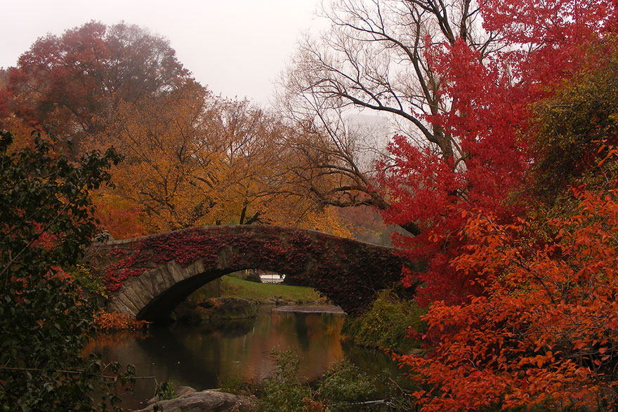 Осеннее преображение