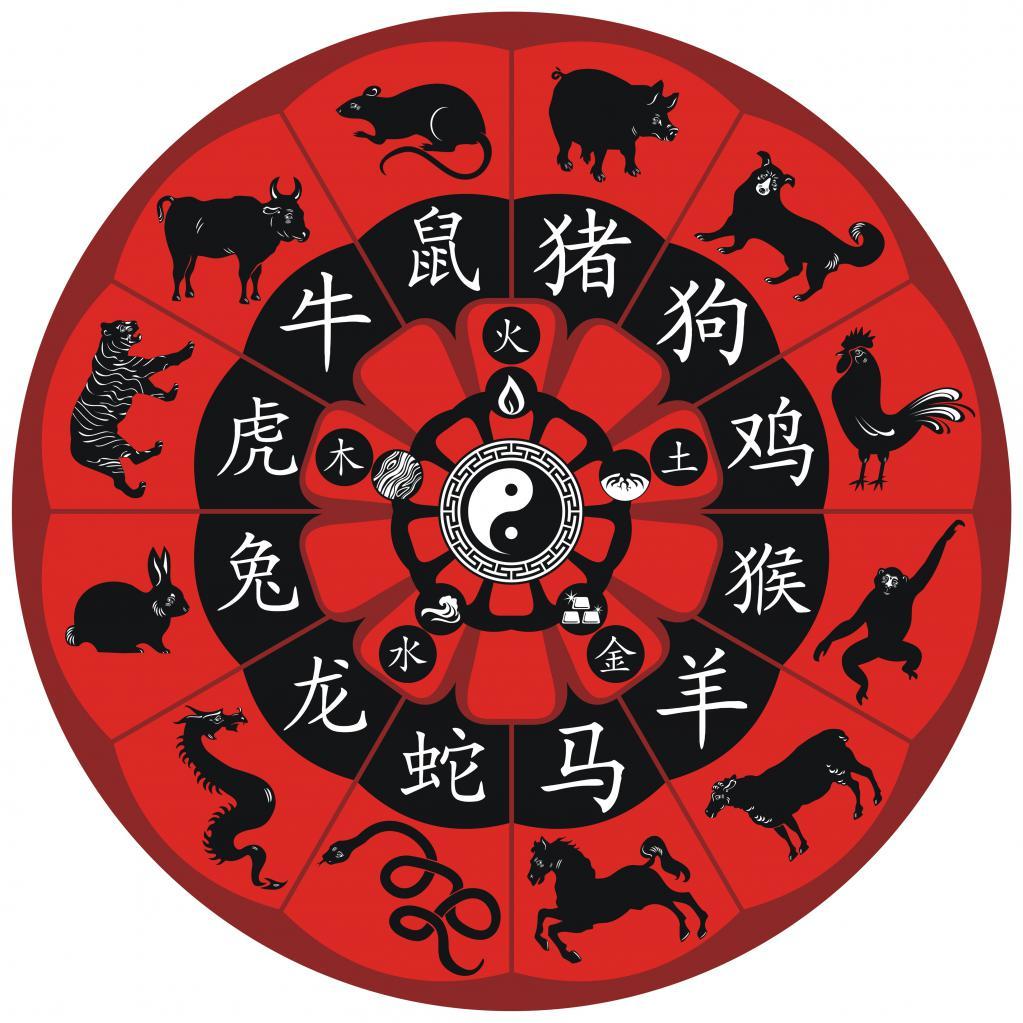 Векторный союз: понятие, астрология любви, браки, совместимость, плюсы и минусы