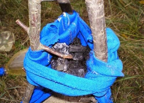 Как очистить воду в полевых условиях