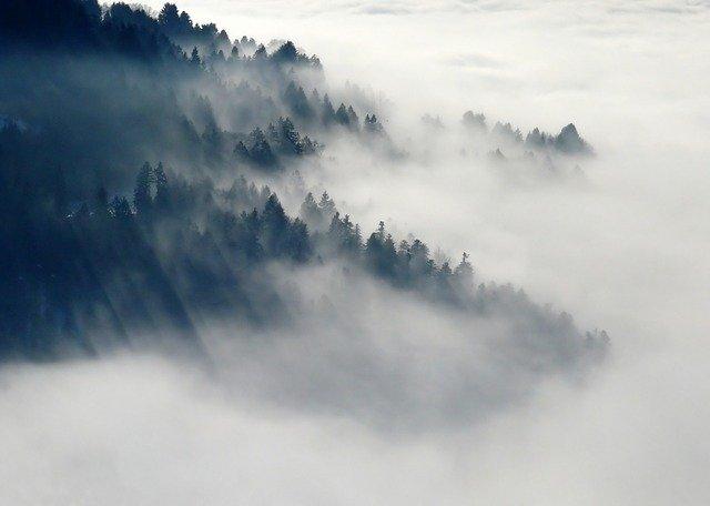 Жители Новосибирска обсуждают густой туман, окутавший город