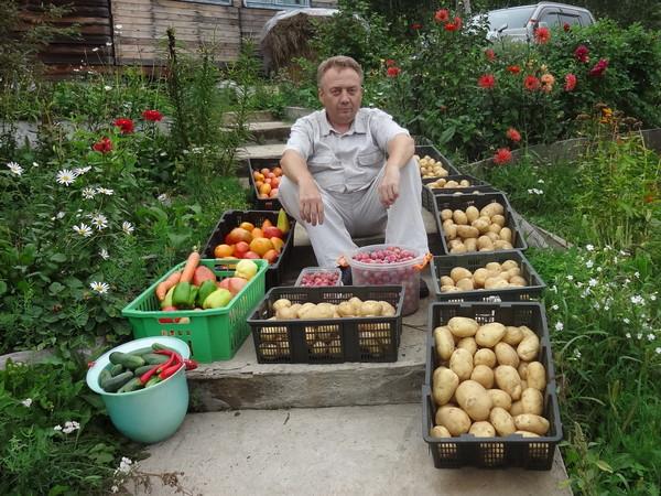 Подкормка для овощей от Игоря Лядова