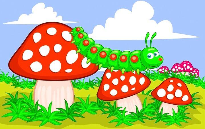 Трафареты грибов