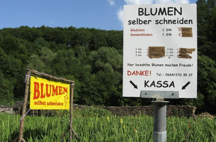 Утром — стулья, вечером — деньги германия, люди, подборка, страна, традиции, факты