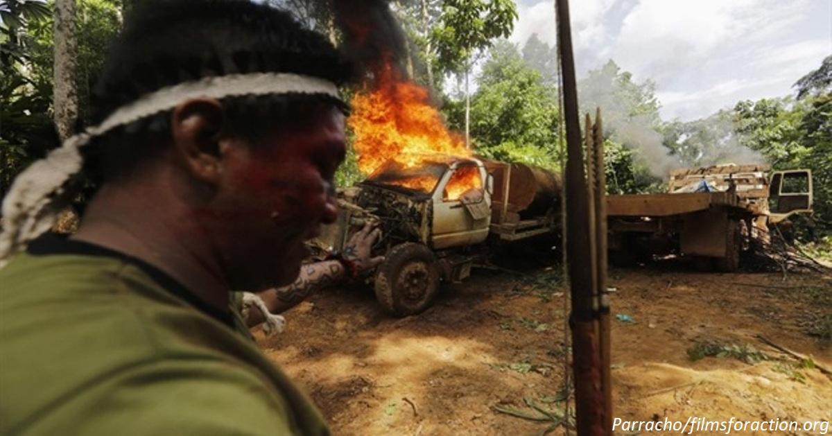 В Бразилии индейцы берут в руки оружие, чтобы спасти леса Амазонки