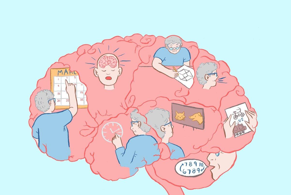 3 простых задания для проверки первых признаков деменции. Проверьте себя и близких деменция,здоровье,мозг,память,тесты